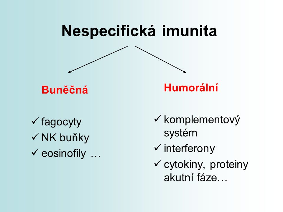 Nespecifická imunita Humorální Buněčná komplementový systém fagocyty