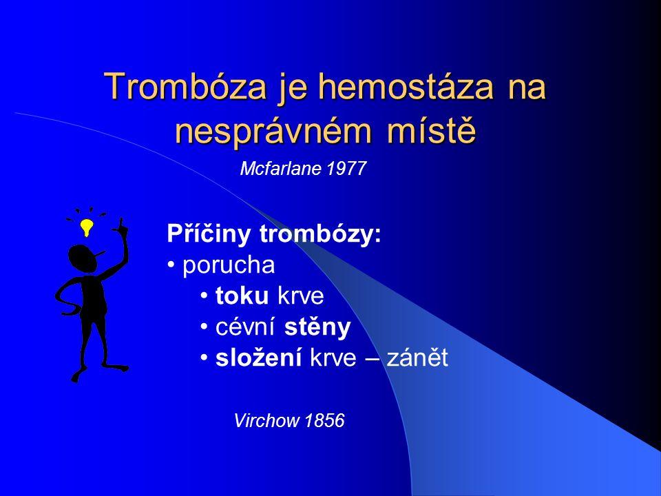 Trombóza je hemostáza na nesprávném místě