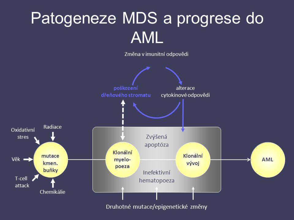 Patogeneze MDS a progrese do AML