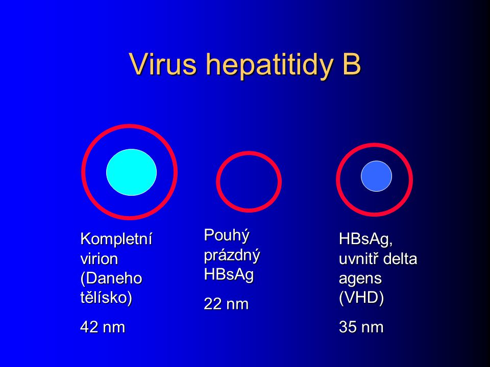 Virus hepatitidy B Pouhý prázdný HBsAg 22 nm