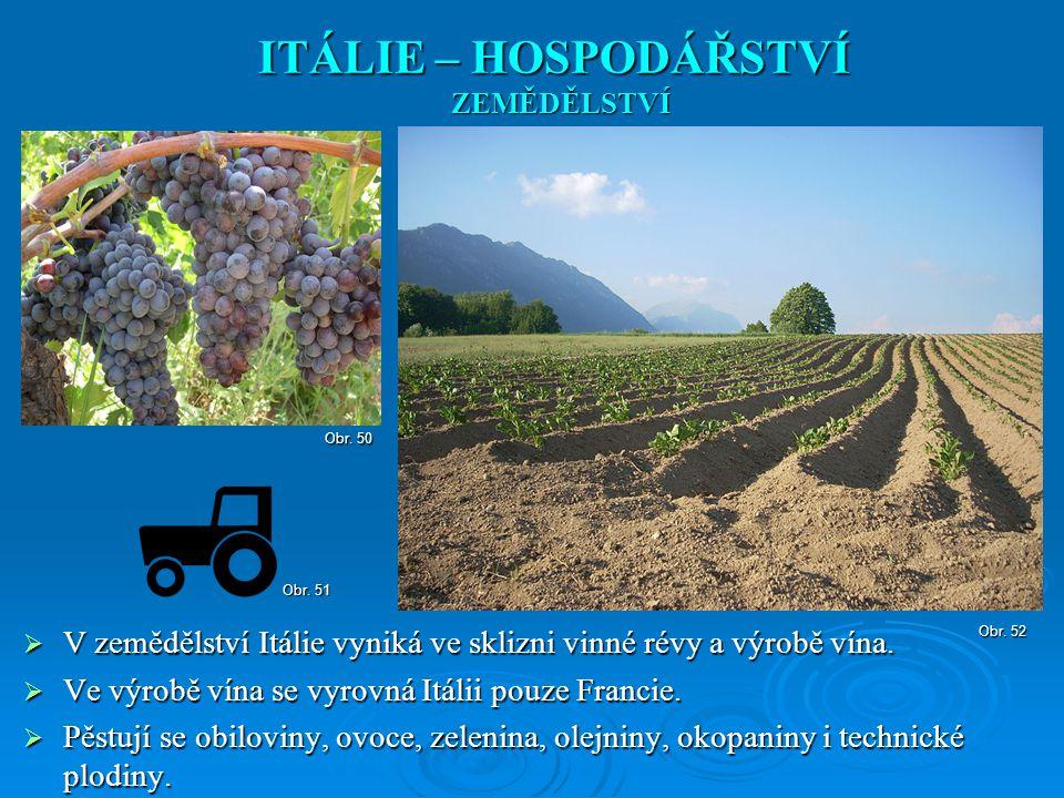 ITÁLIE – HOSPODÁŘSTVÍ ZEMĚDĚLSTVÍ. Obr. 50. Obr. 51. V zemědělství Itálie vyniká ve sklizni vinné révy a výrobě vína.