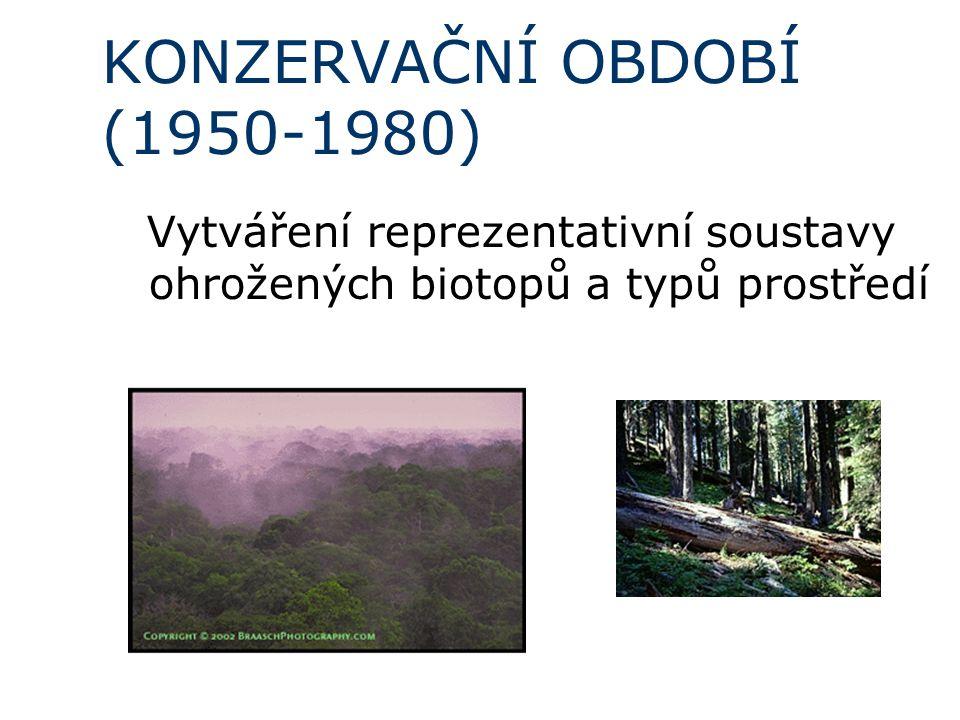 KONZERVAČNÍ OBDOBÍ (1950-1980)