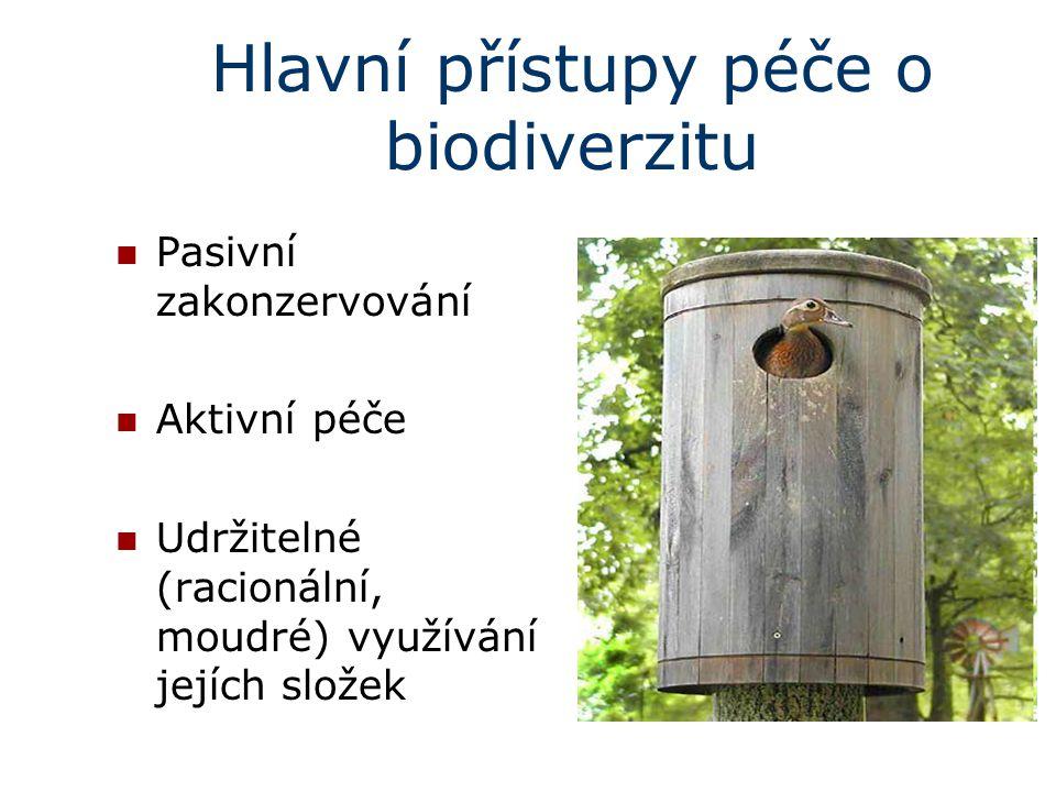 Hlavní přístupy péče o biodiverzitu