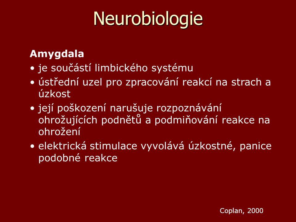 Neurobiologie Amygdala je součástí limbického systému