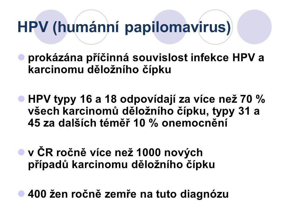 HPV (humánní papilomavirus)