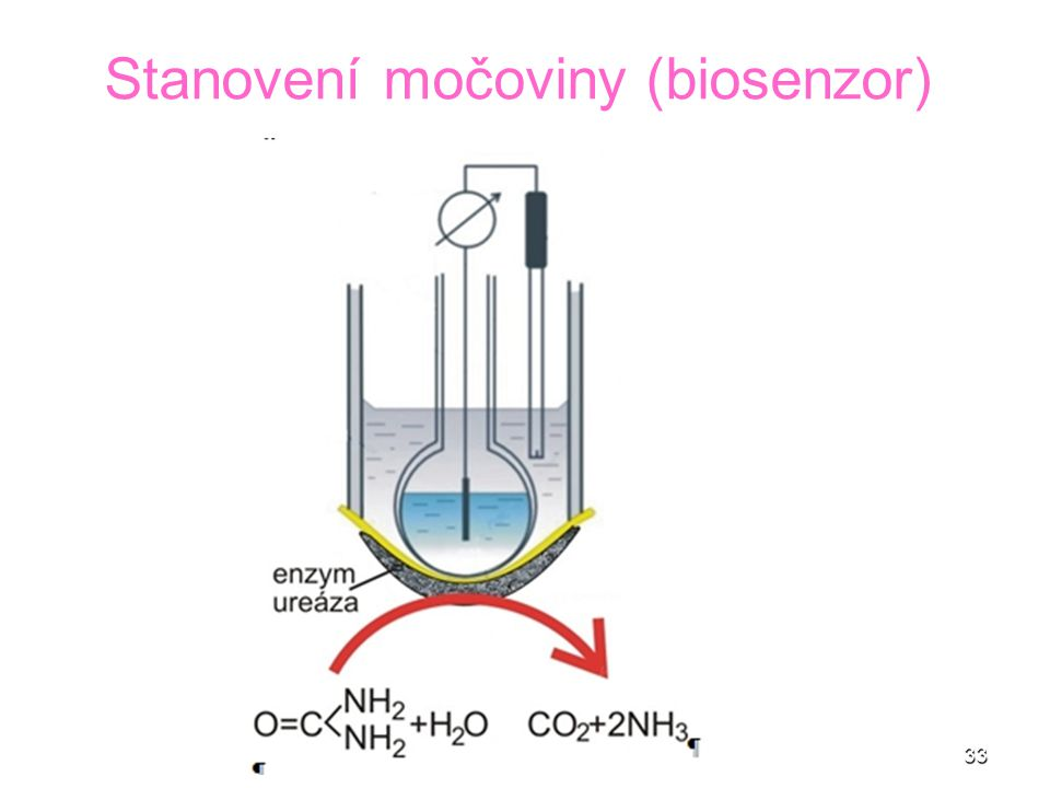 Stanovení močoviny (biosenzor)