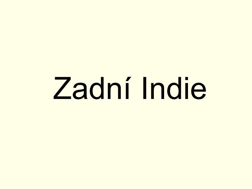 Zadní Indie