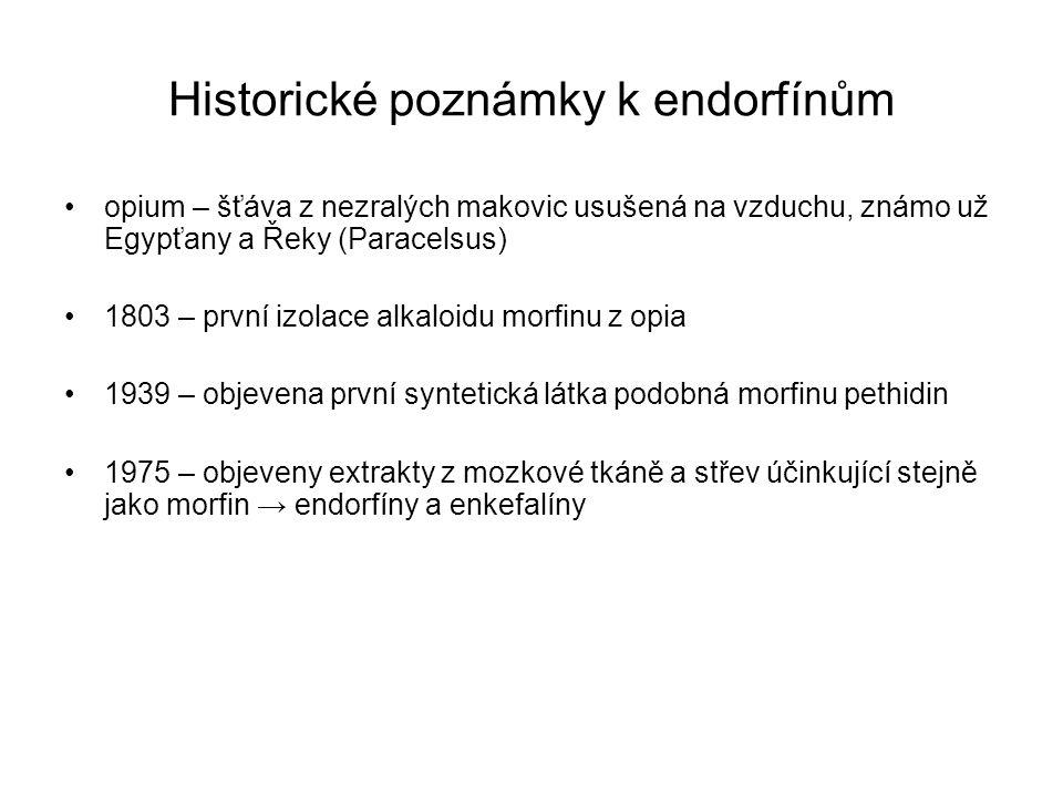 Historické poznámky k endorfínům