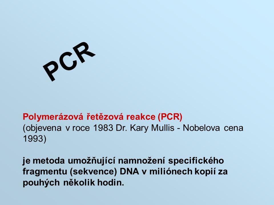 PCR Polymerázová řetězová reakce (PCR)