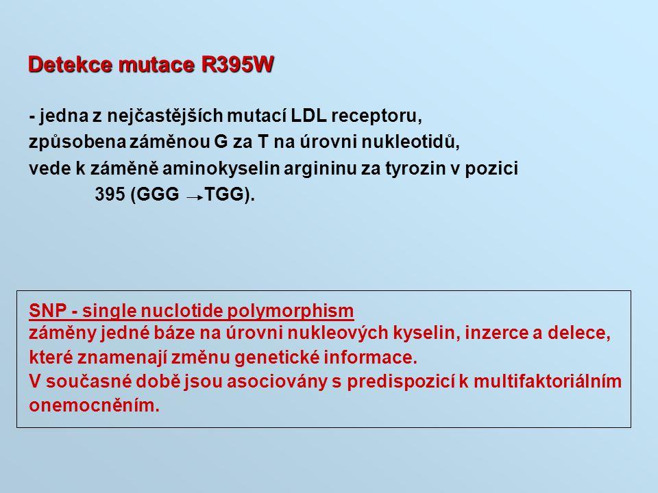 Detekce mutace R395W - jedna z nejčastějších mutací LDL receptoru,