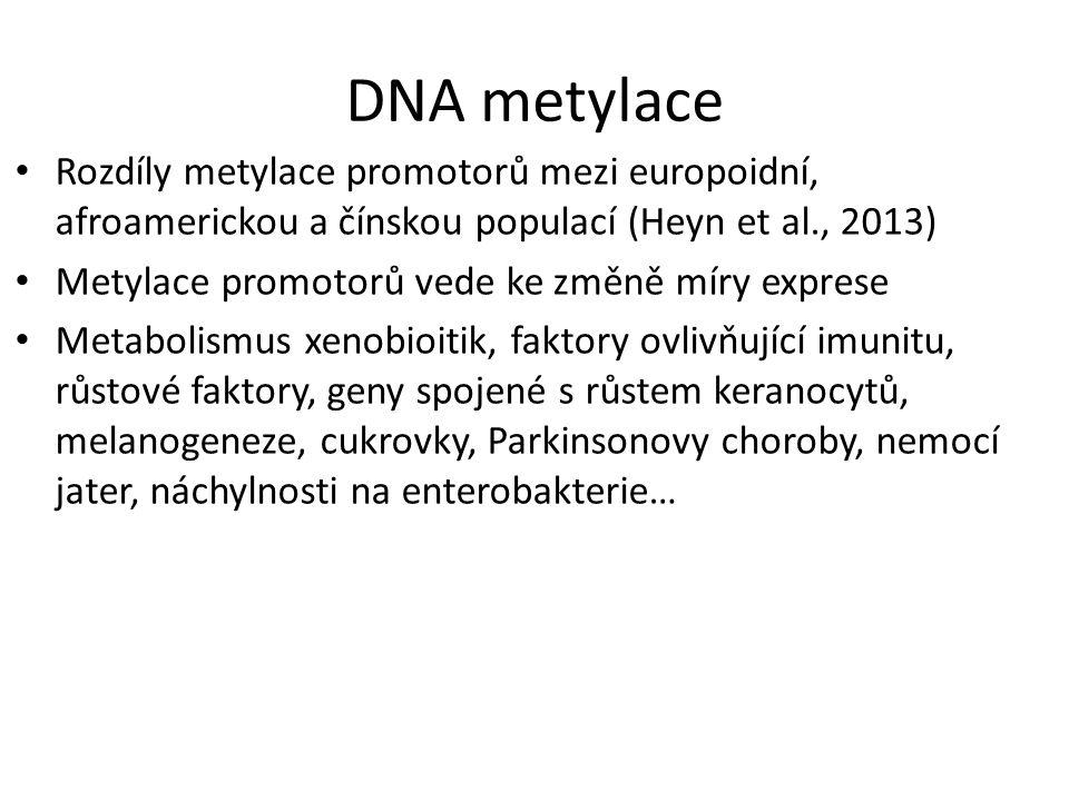 DNA metylace Rozdíly metylace promotorů mezi europoidní, afroamerickou a čínskou populací (Heyn et al., 2013)