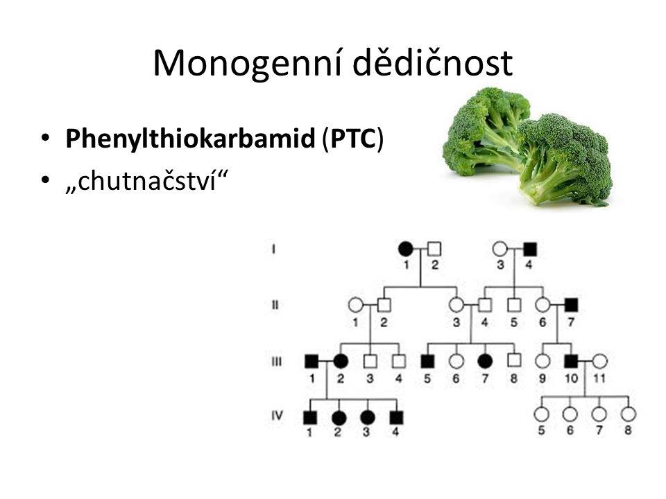 """Monogenní dědičnost Phenylthiokarbamid (PTC) """"chutnačství"""