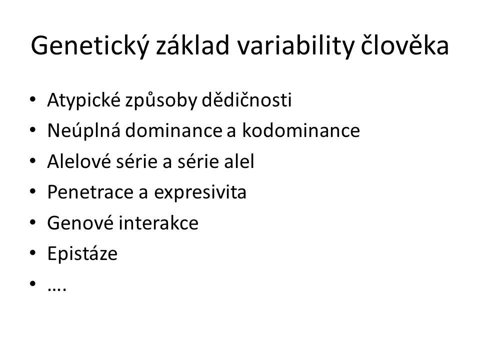 Genetický základ variability člověka