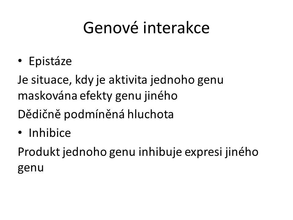 Genové interakce Epistáze