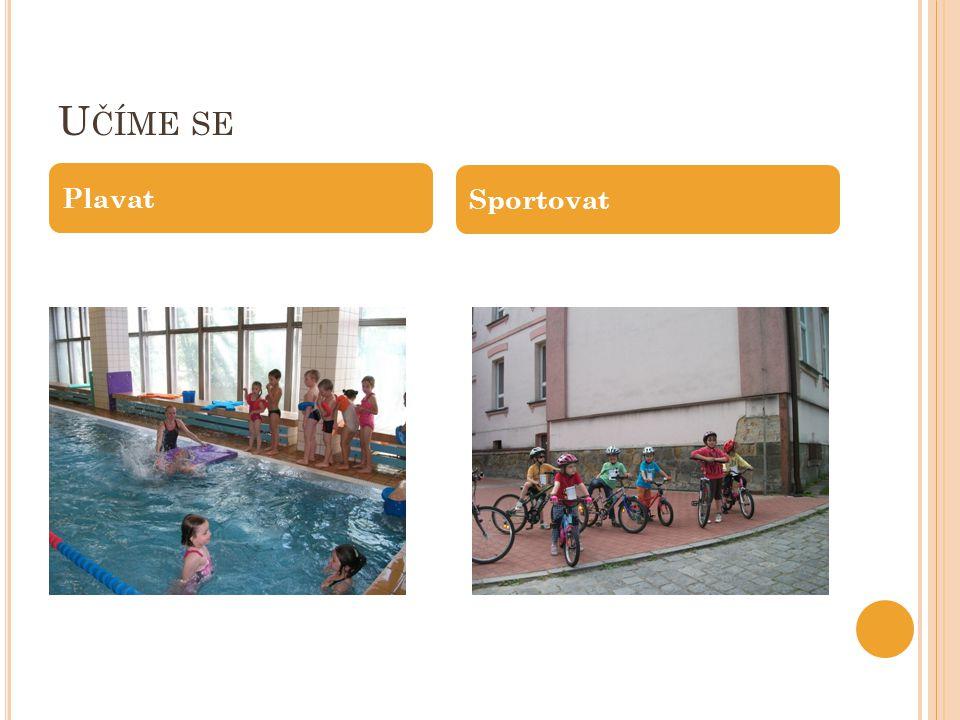 Učíme se Plavat Sportovat