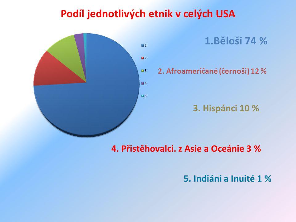 Podíl jednotlivých etnik v celých USA