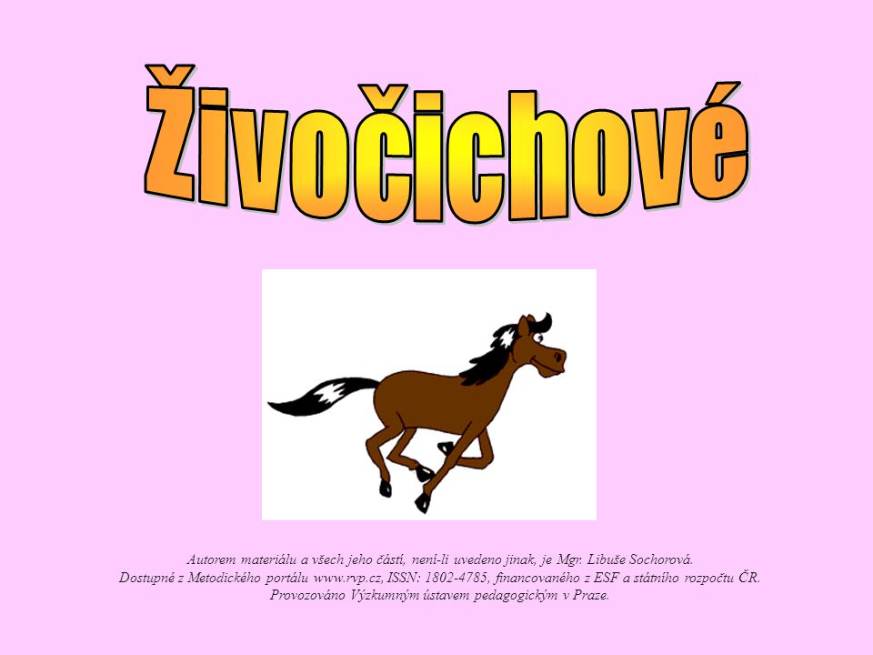 Živočichové Autorem materiálu a všech jeho částí, není-li uvedeno jinak, je Mgr. Libuše Sochorová.