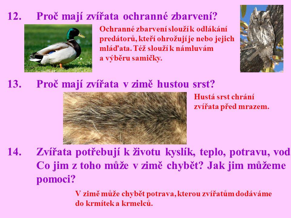 12. Proč mají zvířata ochranné zbarvení