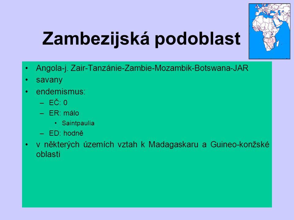 Zambezijská podoblast