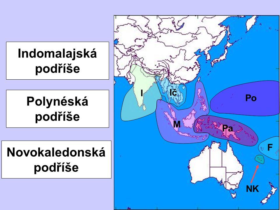 Novokaledonská podříše