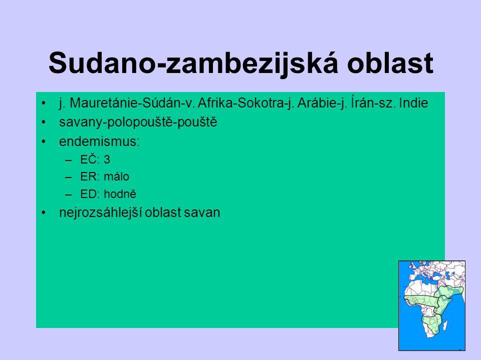 Sudano-zambezijská oblast