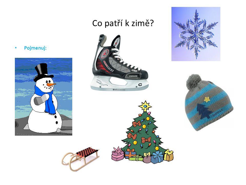 Co patří k zimě Pojmenuj:
