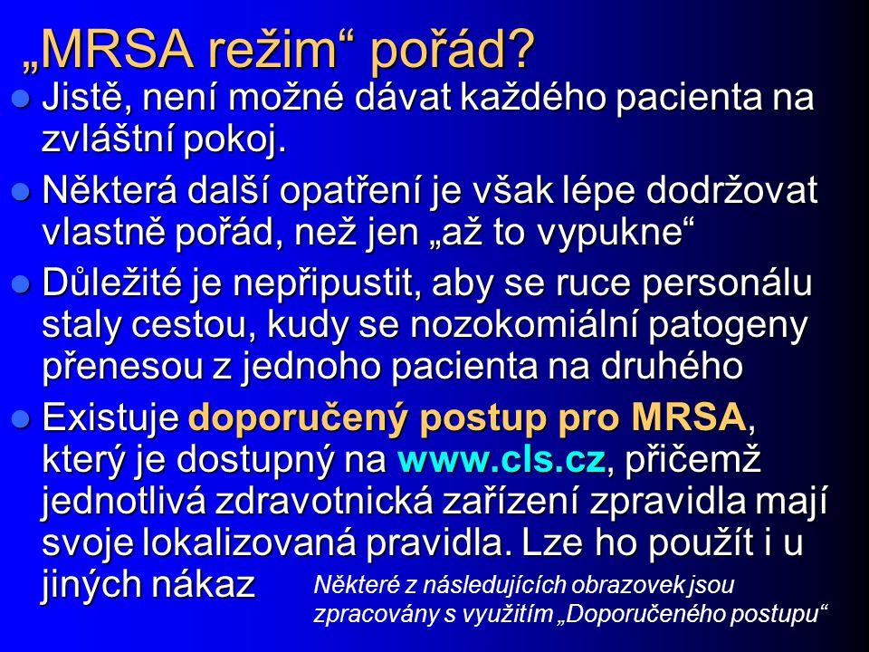 """""""MRSA režim pořád Jistě, není možné dávat každého pacienta na zvláštní pokoj."""