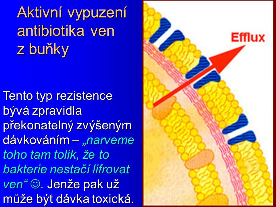 Aktivní vypuzení antibiotika ven z buňky