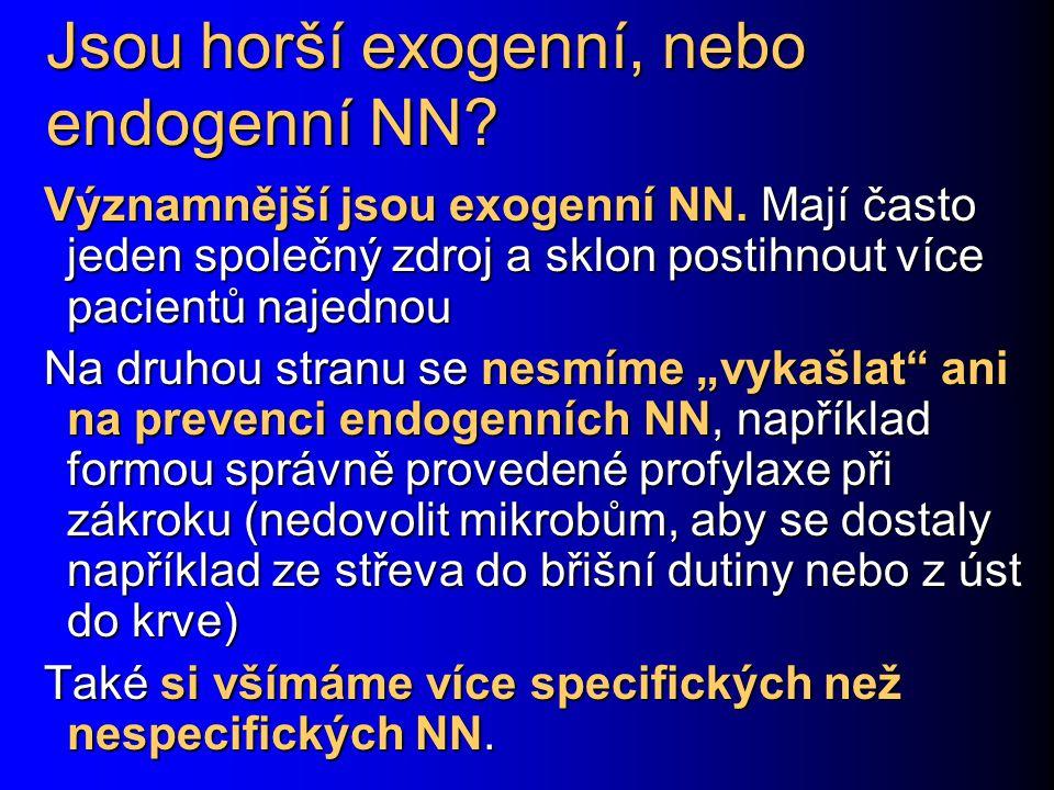 Jsou horší exogenní, nebo endogenní NN