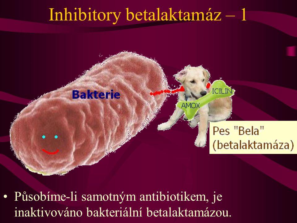 Inhibitory betalaktamáz – 1