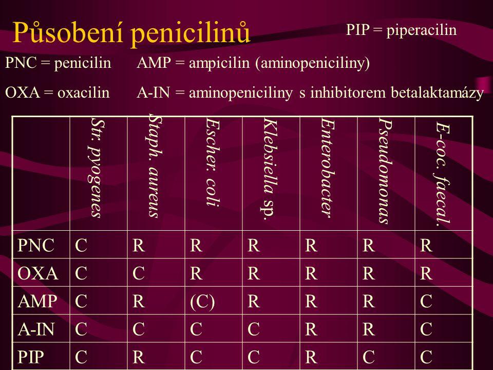 Působení penicilinů Staph. aureus PNC C R OXA AMP (C) A-IN PIP