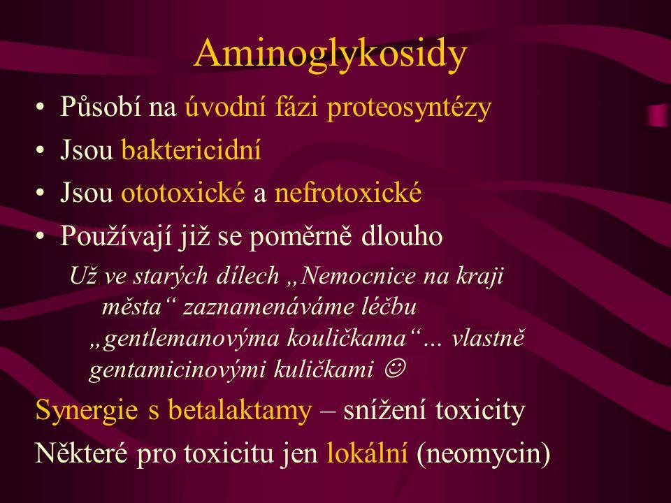 Aminoglykosidy Působí na úvodní fázi proteosyntézy Jsou baktericidní