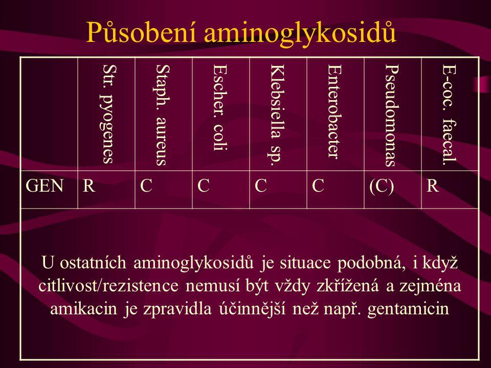 Působení aminoglykosidů