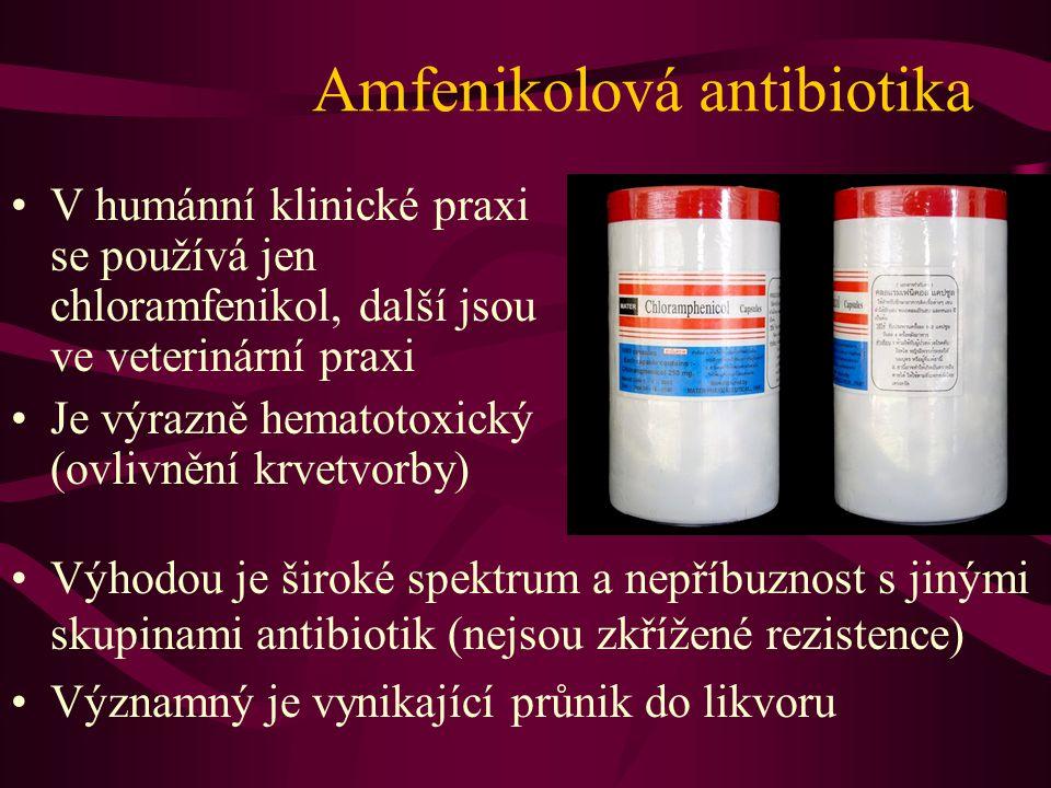 Amfenikolová antibiotika