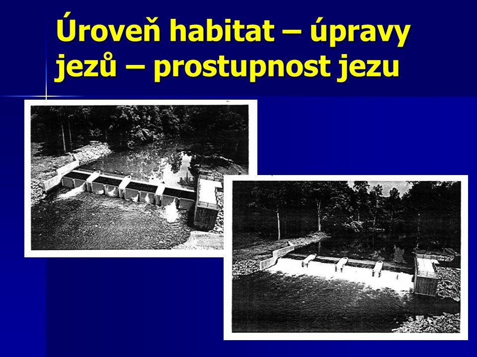 Úroveň habitat – úpravy jezů – prostupnost jezu