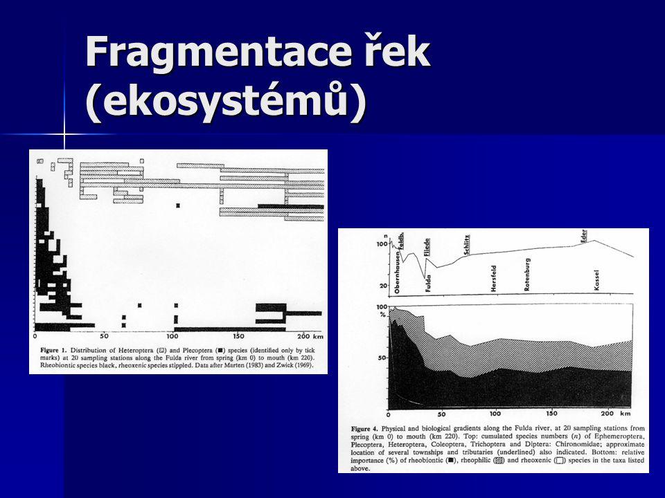 Fragmentace řek (ekosystémů)