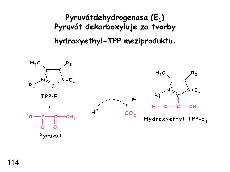Pyruvátdehydrogenasa (E1) Pyruvát dekarboxyluje za tvorby hydroxyethyl-TPP meziproduktu.