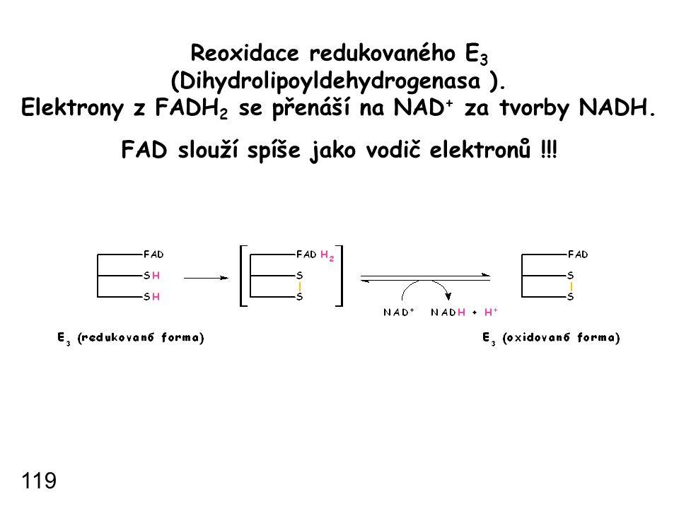 Reoxidace redukovaného E3 (Dihydrolipoyldehydrogenasa )