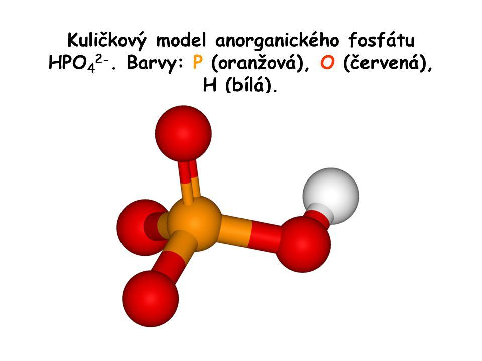 Kuličkový model anorganického fosfátu HPO42-