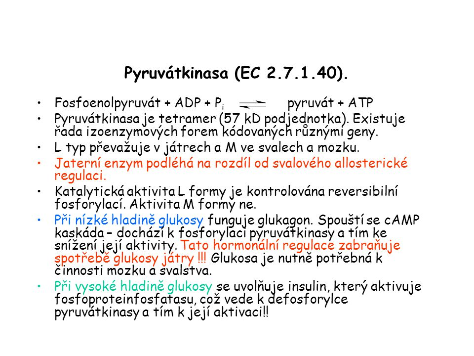 Pyruvátkinasa (EC 2.7.1.40). Fosfoenolpyruvát + ADP + Pi pyruvát + ATP