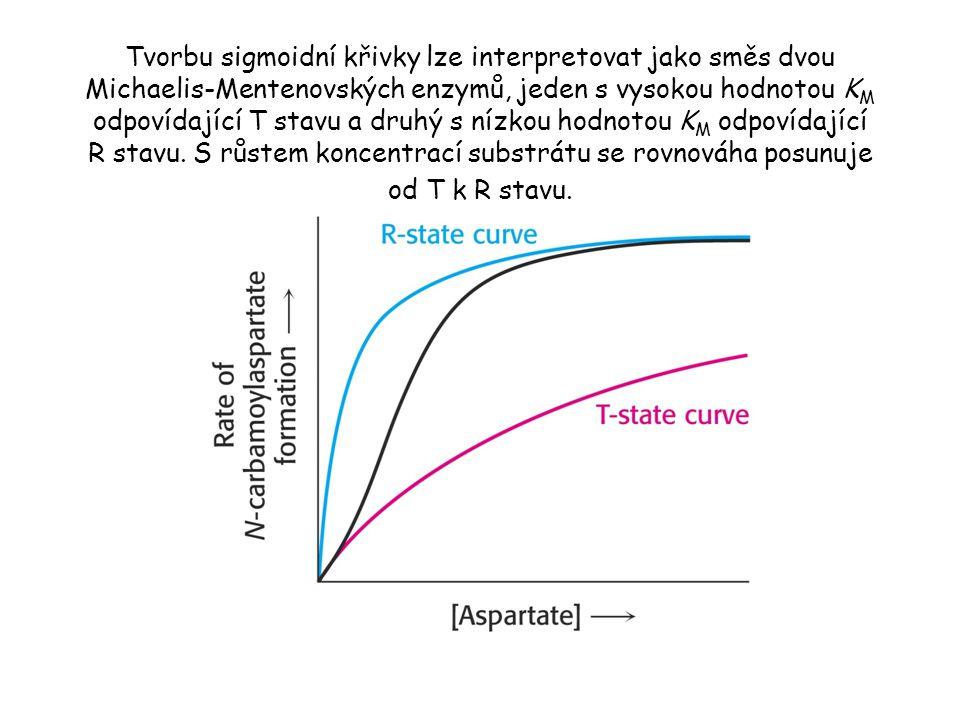 Tvorbu sigmoidní křivky lze interpretovat jako směs dvou Michaelis-Mentenovských enzymů, jeden s vysokou hodnotou KM odpovídající T stavu a druhý s nízkou hodnotou KM odpovídající R stavu.