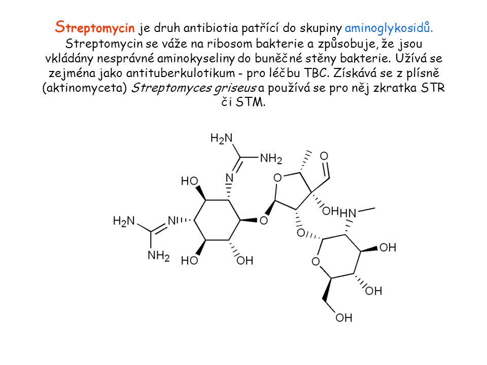 Streptomycin je druh antibiotia patřící do skupiny aminoglykosidů