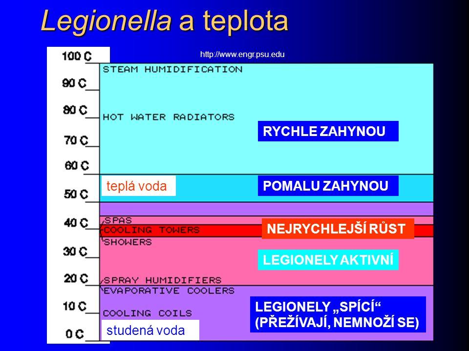 Legionella a teplota RYCHLE ZAHYNOU teplá voda POMALU ZAHYNOU