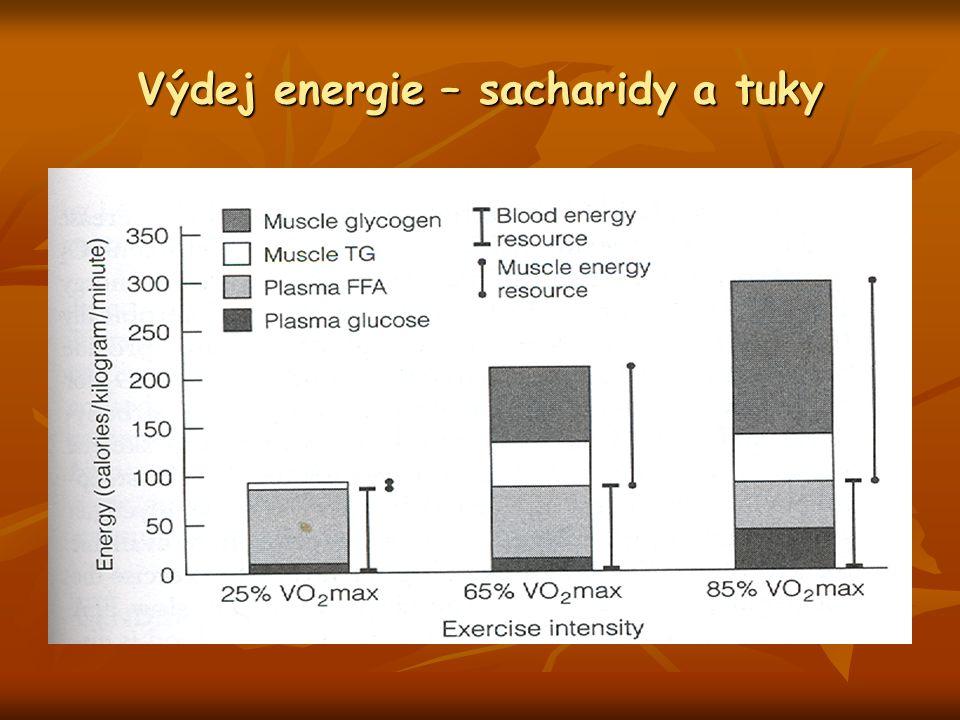 Výdej energie – sacharidy a tuky