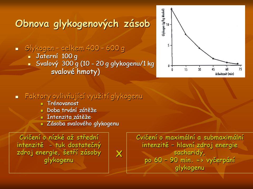 Obnova glykogenových zásob