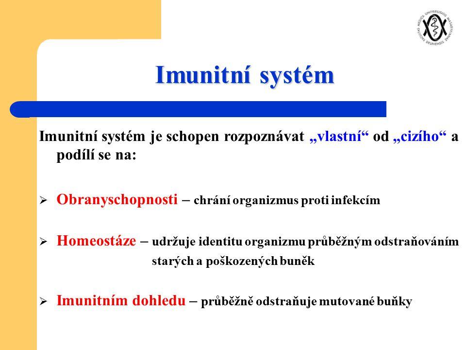 """Imunitní systém Imunitní systém je schopen rozpoznávat """"vlastní od """"cizího a podílí se na: Obranyschopnosti – chrání organizmus proti infekcím."""