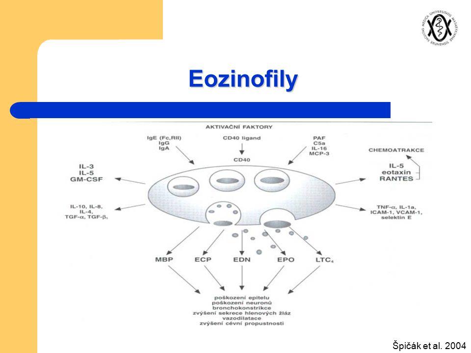 Eozinofily Špičák et al. 2004