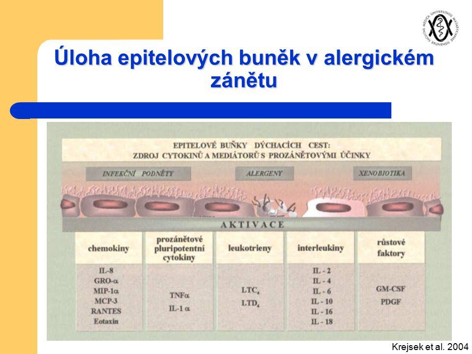 Úloha epitelových buněk v alergickém zánětu