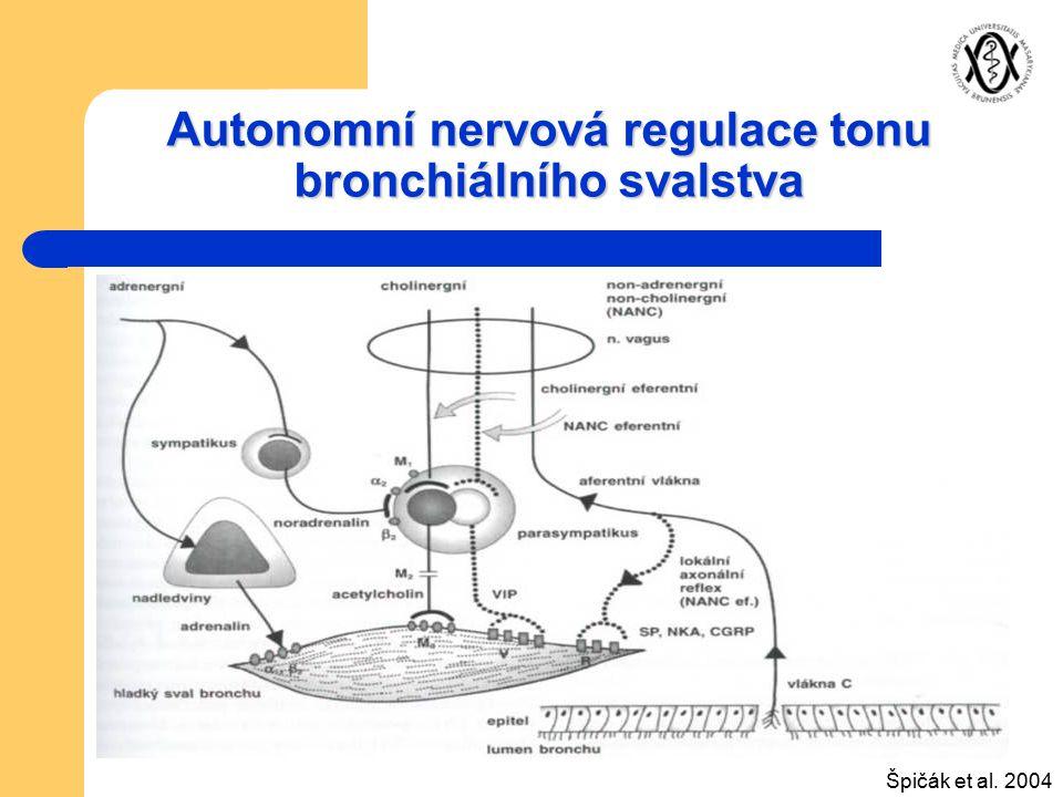 Autonomní nervová regulace tonu bronchiálního svalstva