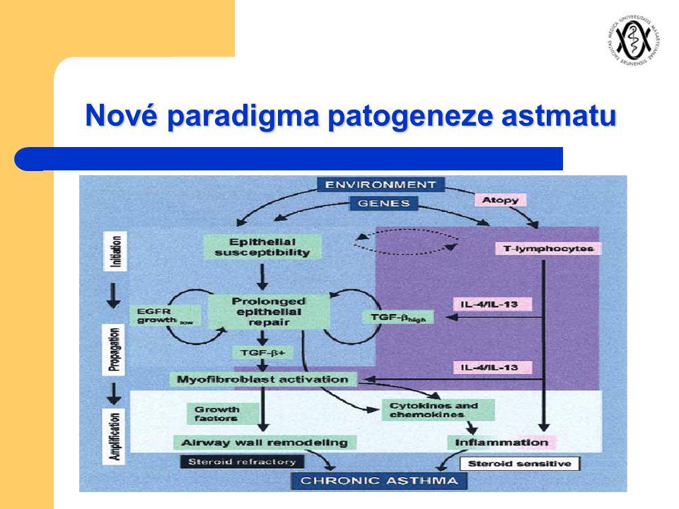Nové paradigma patogeneze astmatu